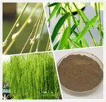 White Willow Extract Powder