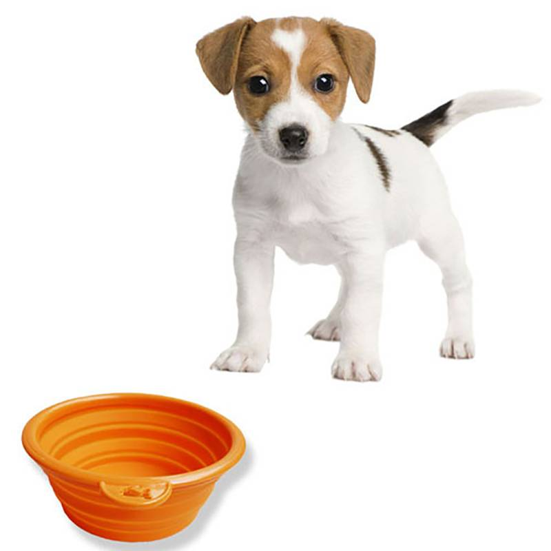 HH-0063 Custom Collapsible Pet Bowls 450ml