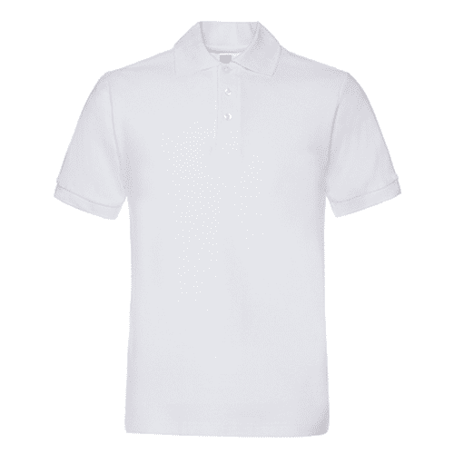 AC-0145 Promotional Polo Shirts With Logo Printed