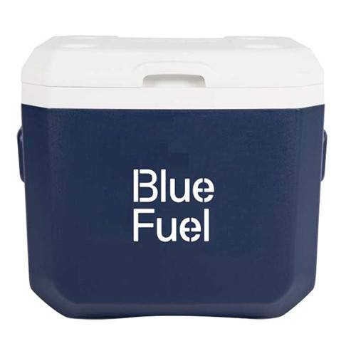 BT-0109 Promotional portable cooler box