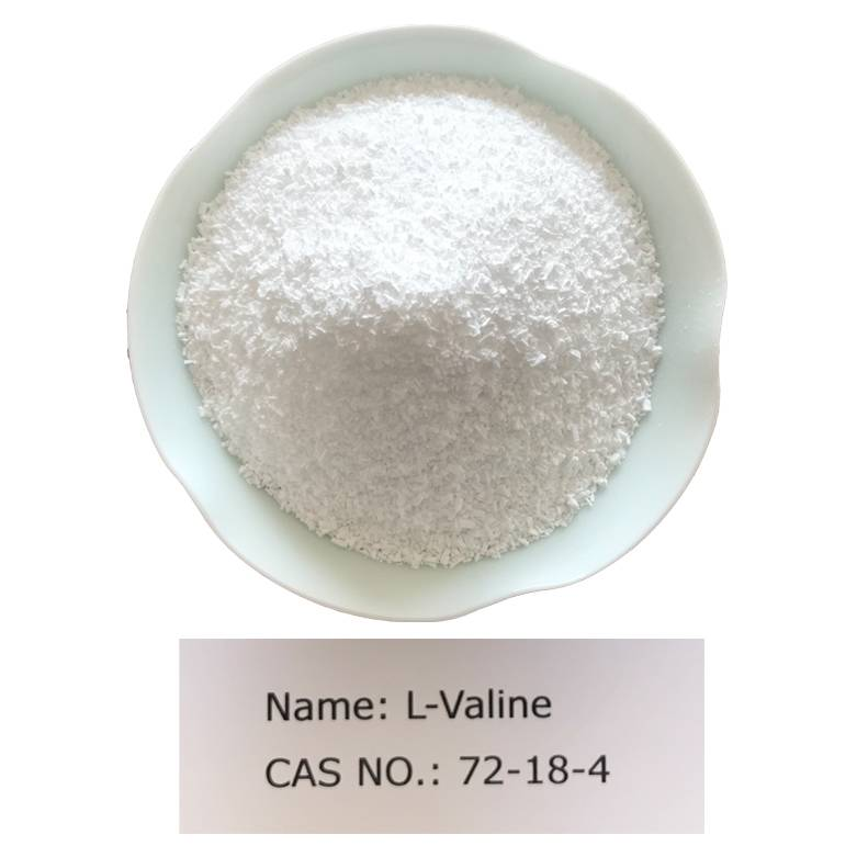 L-Valine CAS 72-18-4 for Food Grade(AJI/USP) Featured Image