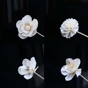 Attractive Sola Flower Handmade Dried Flower for Fragrance Oil