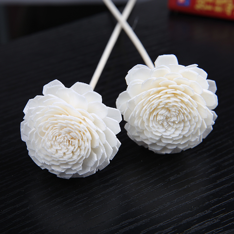 Attractive Sola Flower Handmade Dried Flower for Fragrance Oil Featured Image
