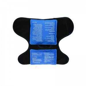 ankle brace with ice pack