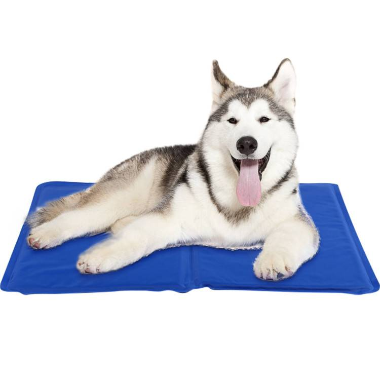 dog cooling mat Featured Image