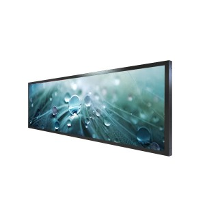LYNDIAN 24.5 inch Stretched LCD Display