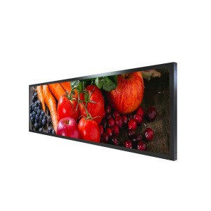 LYNDIAN 19.5 inch Stretched LCD Display