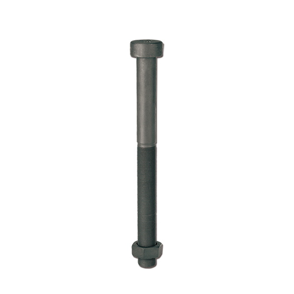 Round head Center bolt for truck Featured Image