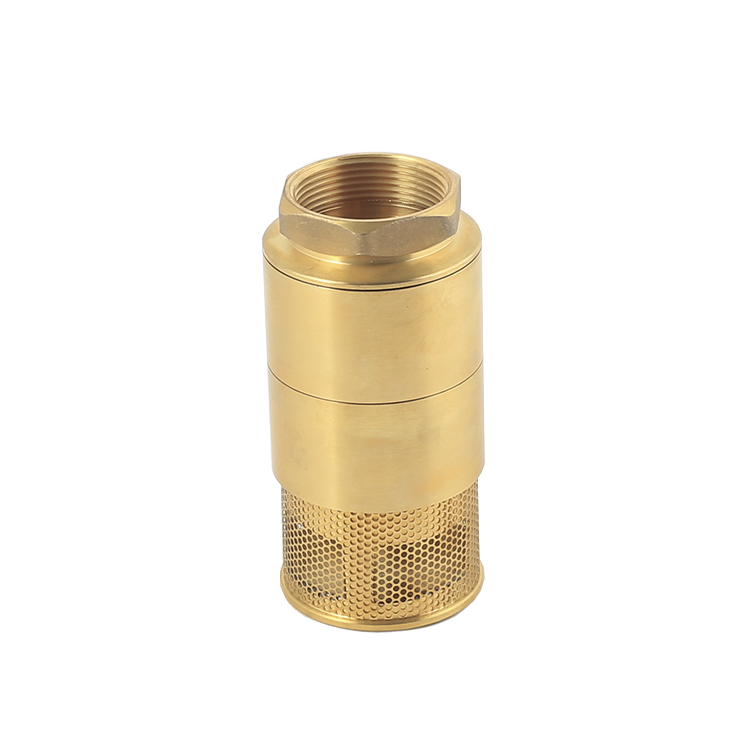 Brass Foot Check Valve Featured Image