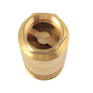 Brass Foot Check Valve