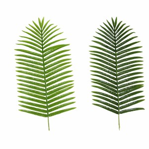 Greenery Plastic Big Palm Tree Leaves Artificial Coconut Date Palm Tree Leaf for Project use