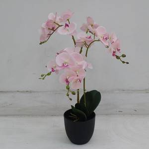 Factory wholesale artificial orchid plants and bonsai for store hotel decor faux orchid plants for home garden table decoration