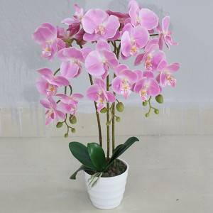 Yiwu factory decorative artificial orchid plant wholesale artificial plant