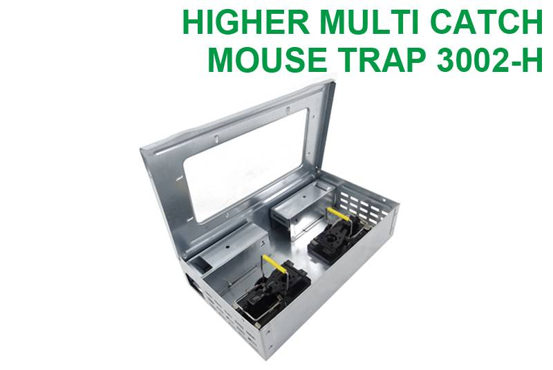 Multiple Catch Mouse Trap