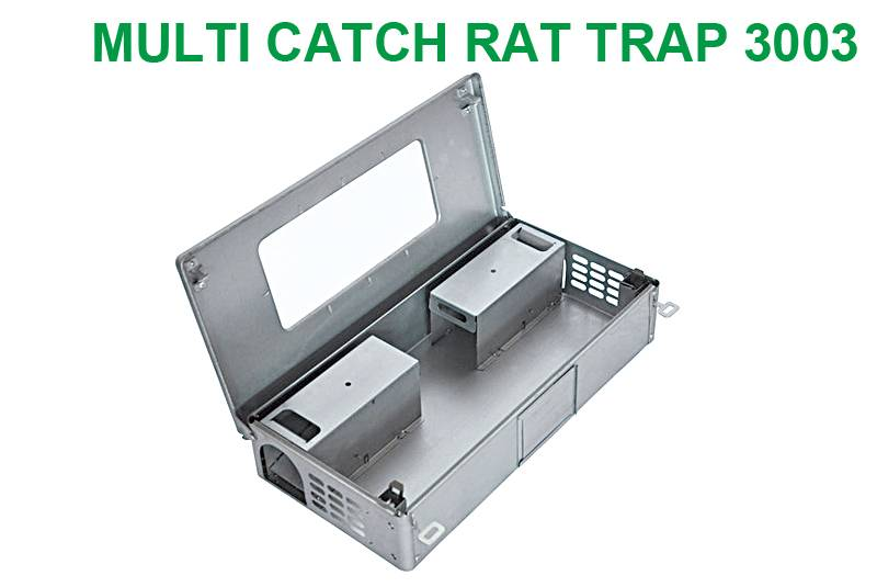 Multiple Catch Rat Trap with Clear Inspection Window