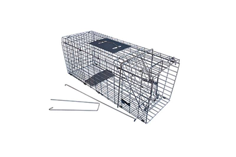Collapsible Cat Trap Cage 2015