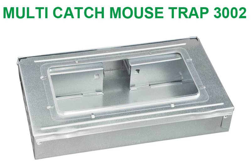 Multiple Catch Mouse Trap with Clear Inspection Window