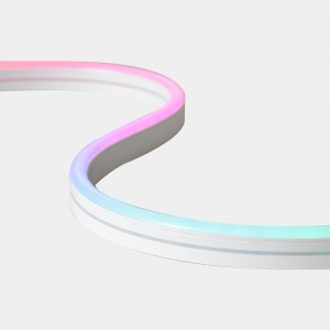 DC12V magic color soft neon led strip