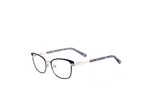 2021 Joysee SR9209 good looking metal frame
