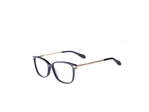 Joysee 2021 17404 metal temple eyeglasses, metal and acetate frame optical eyeglasses