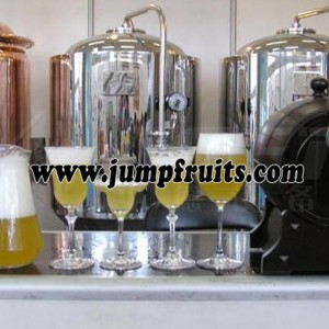 Self brewed fresh beer equipment