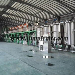 Navel orange, citrus, grapefruit, lemon processing machine and production line
