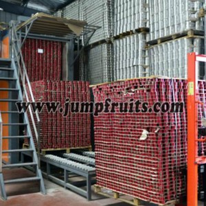 Canned food machine and Jam production equipment