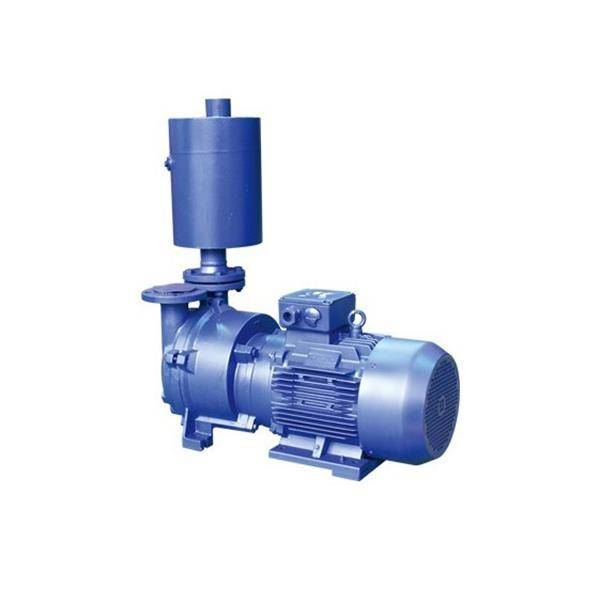 2BEX Vacuum Pump Featured Image