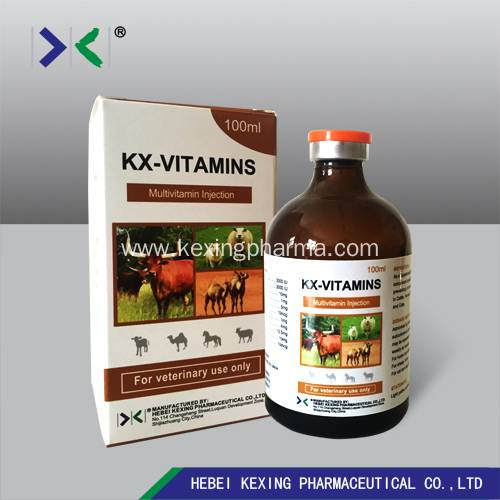 Animal Vitamin B12 and Butafosfan Injection 100ml Featured Image