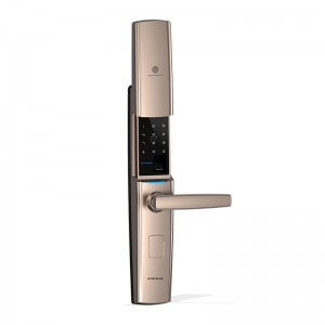 Z8 Password Fingerprint Key Card Security Cover Sliding Door Locks