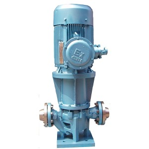 MG Magnetic Driven Pump