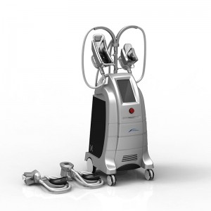 Body System Best 4 Handles Fat Freezing Newest Fda Approval Machine Cryolipolysis Body Slimming Apparatus
