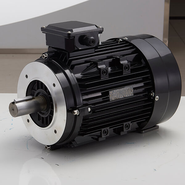 MS aluminum housing three-phase asynchronous motor Featured Image