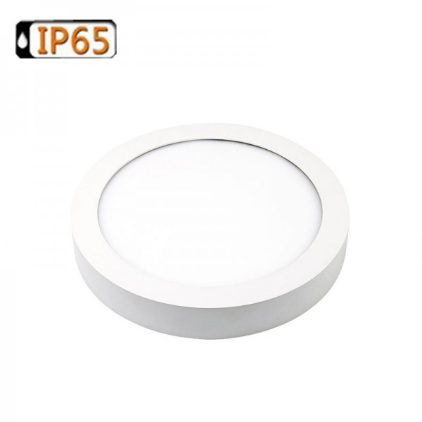 15W 200mm Small Round IP65 LED Surface Ceiling Panel Light