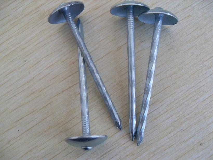 Best Quality Umbrella Head Roofing Nail
