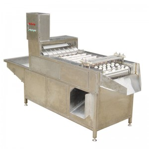 MT-200-1 egg peeling machine