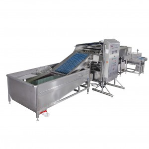MT-200N Soft-boiled egg peeling machine