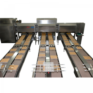 Egg sorting and packing Machine
