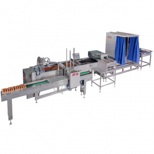 Hatching egg packing machine