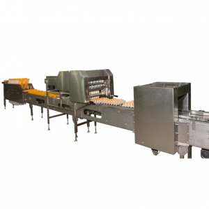 Egg packing machine