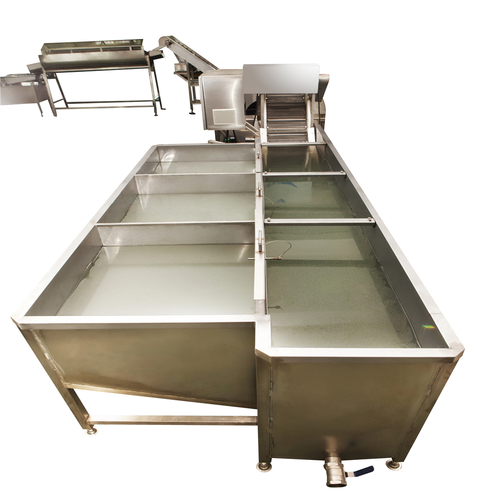 MT-206A Quail egg boiling and shelling production line Featured Image