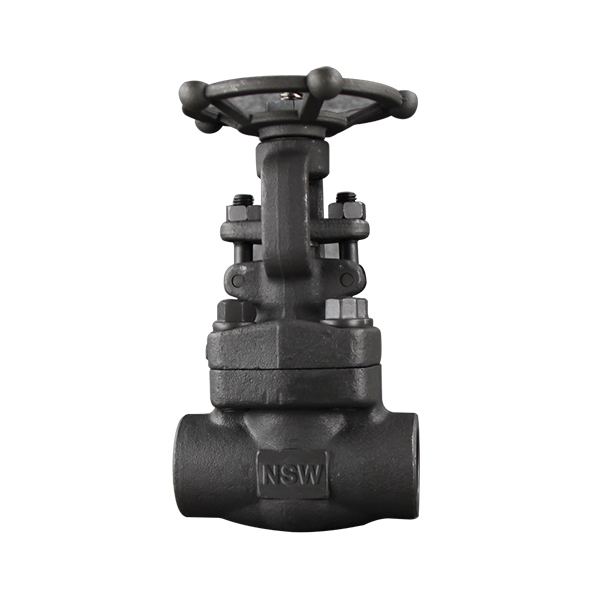 Bolted bonnet Forged Gate Valve Featured Image