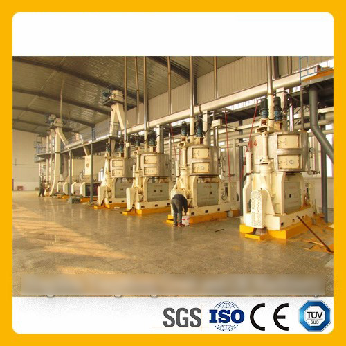 Vegetable Oilseed Pressing Line