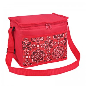 Polyester fabric cooler bag 10L with fashion design pocket