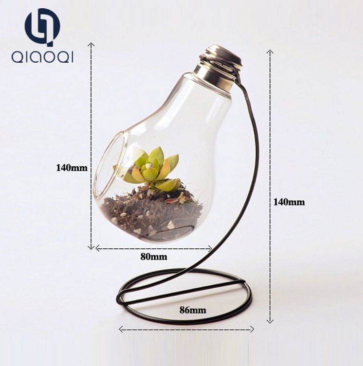 clear bulb glass vase with holder
