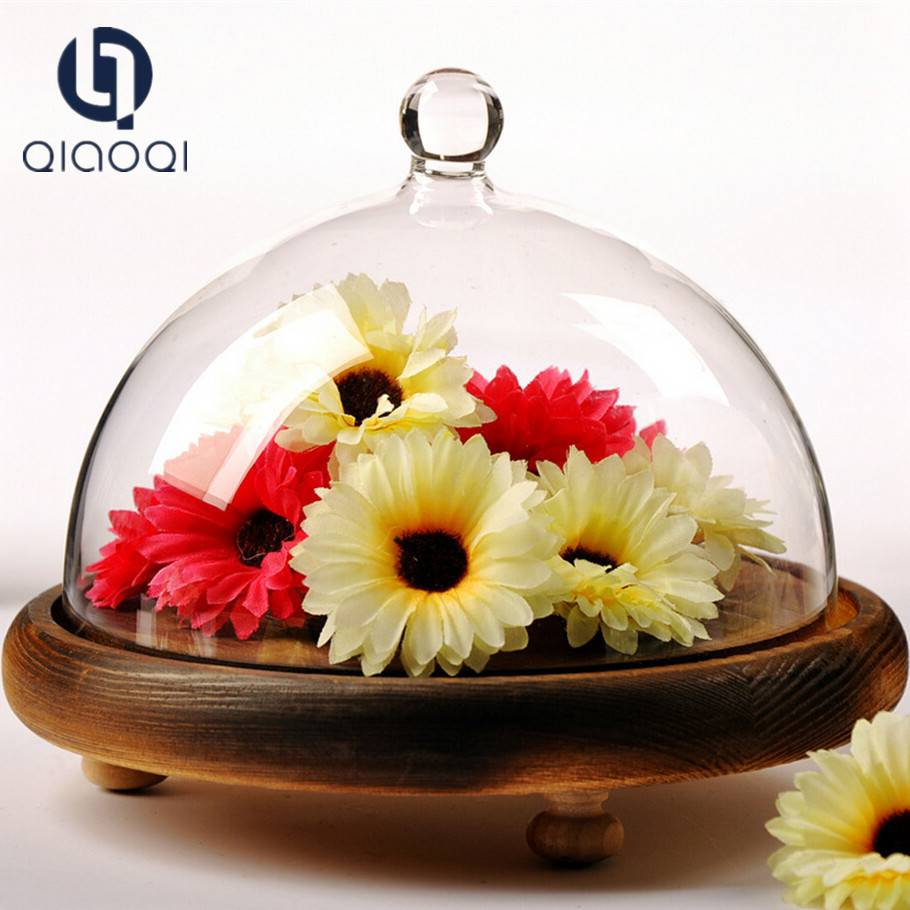 Made in China Wholesale Price Decoration Glass Dome with Wood base