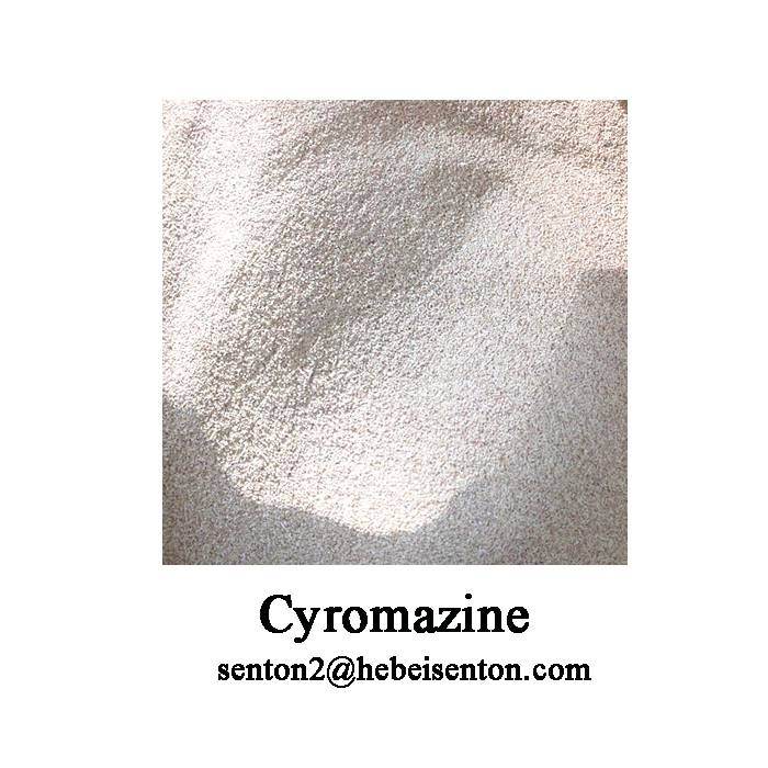 White Powder To Control Flies Cyromazine