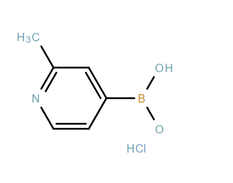 (2-Methylpyridin-4-yl)boronic acid hydrochloride