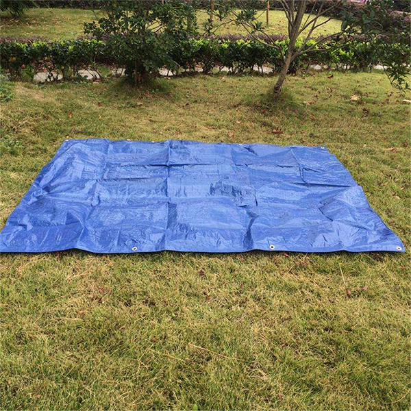 Light Duty Poly Tarp