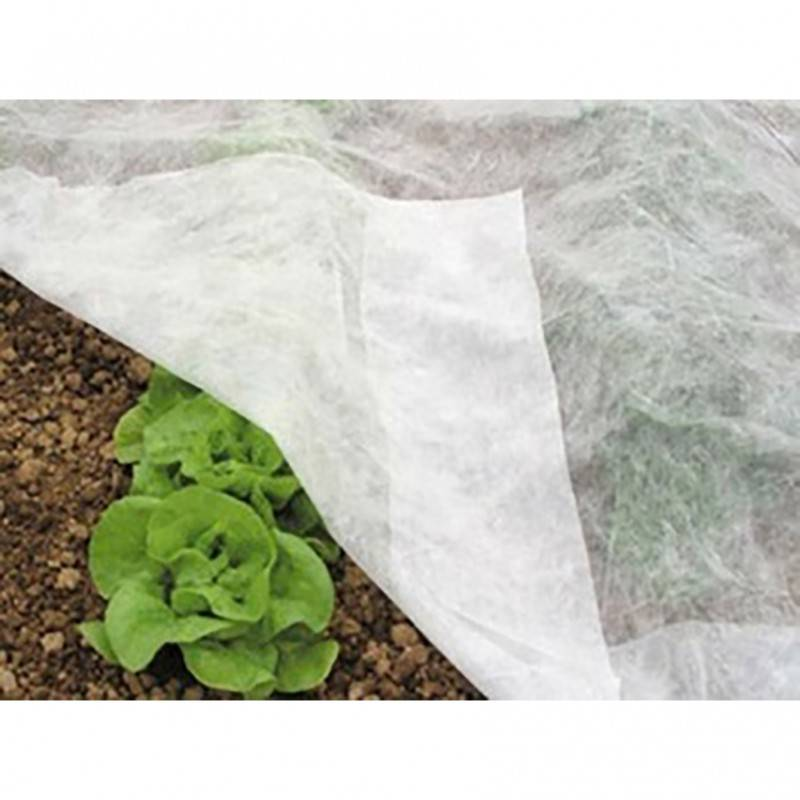 Nonwoven For Agriculture